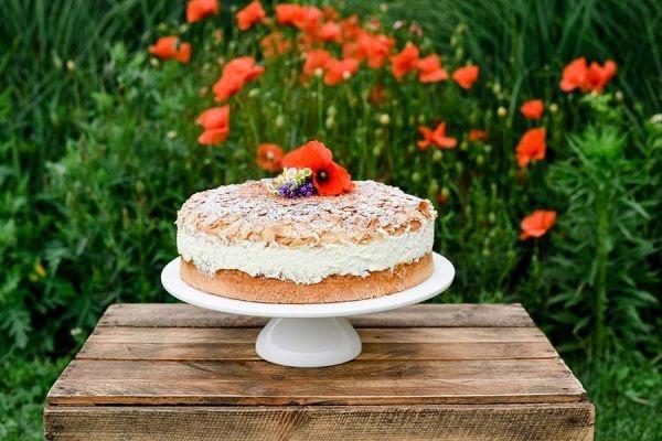 Fondant-Kuchenformen ideal f/ür die Herstellung von K/ürbiskuchen Kuchen Keksen 4 x Weihnachts-Kuchenformen Back-Set f/ür Keksausstecher