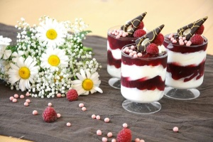 Dessert-Gläser -Becher- 12 Stück / Kunststoff