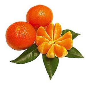 Mandarinen-Fruchtpaste 250 g