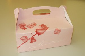 Tragebox klein für 4 - 6 Tortenstücke / 23x16x9 cm / 5 Stück