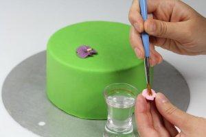 CMC-Pulver essbarer Kleber, 40 g