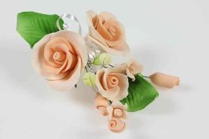 Zucker-Rose apricot, 12 cm