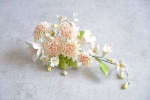 Zucker-Nelken apricot,  21 cm