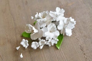 Zucker-Orchideen weiß, 18 cm