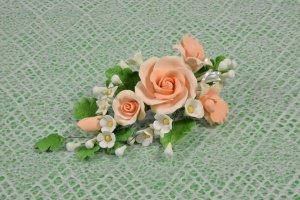 Zucker-Rosen apricot, 18 cm