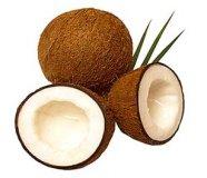 Kokos-Paste  220 g