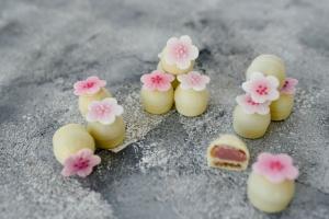 Pralinenfüllung Erdbeer cremig-zart 600-g-Dose