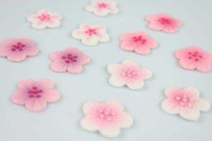 Blumen-Aufleger pink aus Zucker, 12 Stück, ca. 2,5 cm