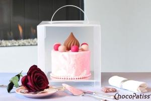 Tortenbox faltbar mit Kühlmöglichkeit matt 24x24x24 cm