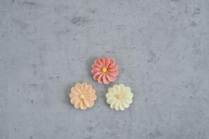 Zuckerblumen, mediterran, 36 Stück
