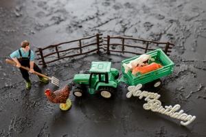 Farmer-Set für Thementorten