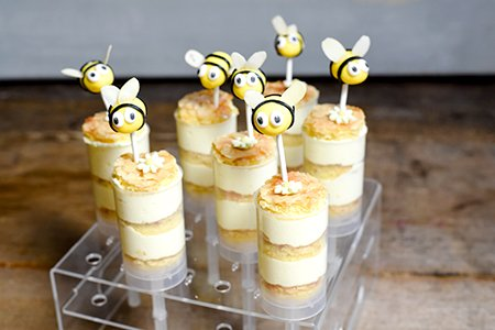 Bienchen Push Up Cake Pops