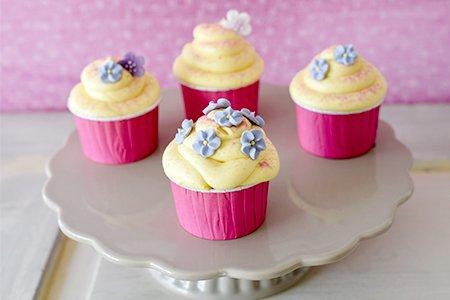Spring Cupcakes Vanilla