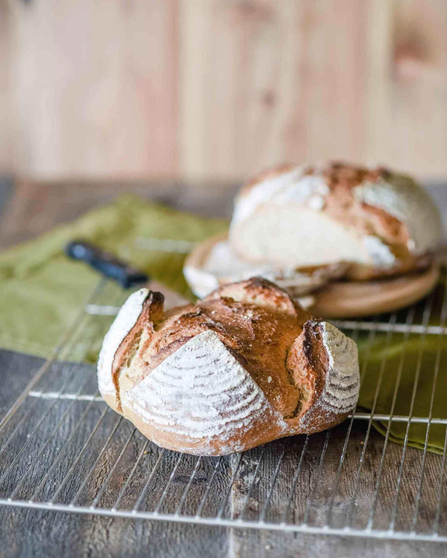 Was Macht Gutes Brot Aus